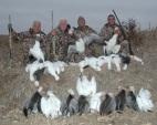 Spring Snow Goose Hunt - Mound City, Missouri - Squaw Creek NWR