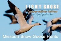 Fully Guided Spring Snow Goose Hunts